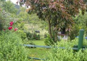 Bonitas vistas del jardín
