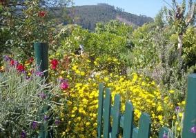 Vistas del jardín