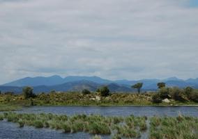 Zonas verdes y la naturaleza