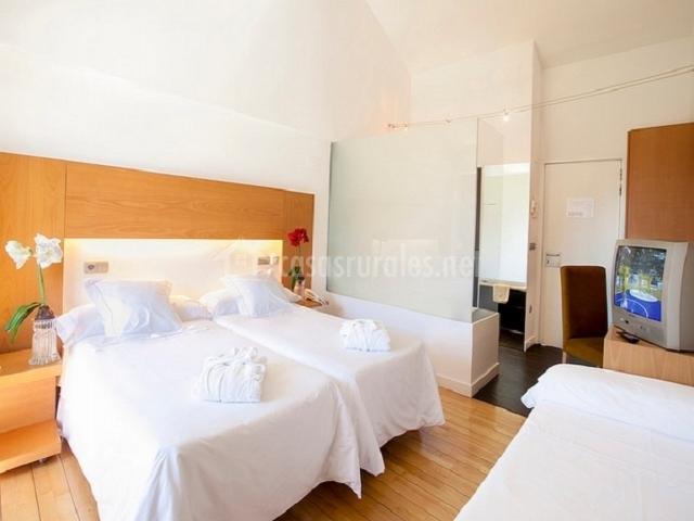 Habitación doble con opción a cama supletoria con baño al fondo