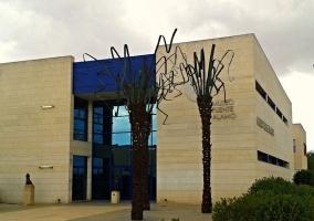 Zona del Museo