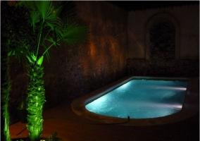 Piscina y palmeras iluminadas de noche