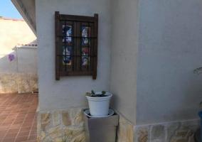 Vistas de las zonas exteriores con las plantas