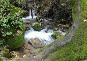 Zona de cascadas