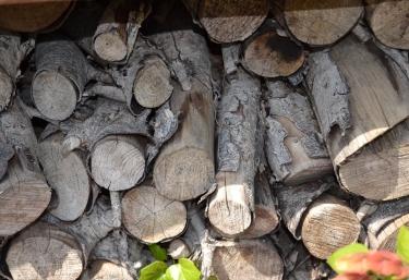 Vistas de la madera en el exterior