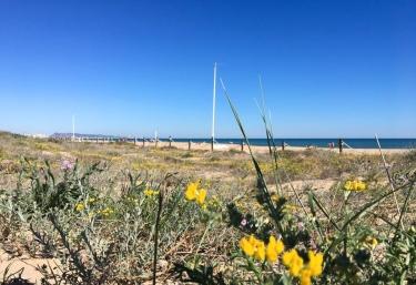 Zona de playas cercanas