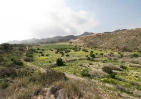 Zonas naturales en el entorno