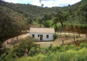 Casa rural Cortijo Viejo