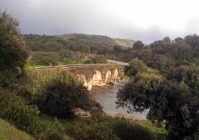 Zonas naturales en el entorno con puente