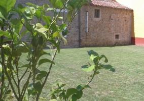 Vistas de las zonas exteriores con jardines