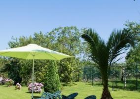 Vistas de los jardines con hamacas y palmeras