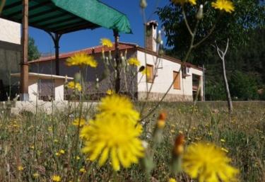 Casas rurales La Donal- Amalia - Yeste, Albacete