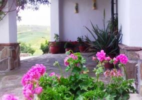 Geranios rosas y porche