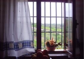 Frutero y vistas desde la ventana