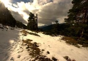 Cercedilla y nieve