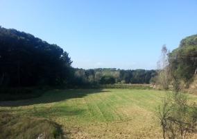 Vistas de las zonas verdes
