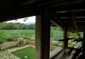 Vistas desde la terraza a los jardines