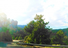 Zona de vistas