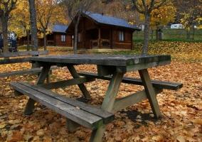 Camping Viu