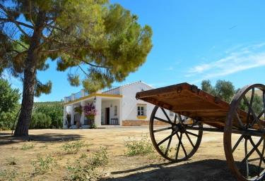 El Madrigal de Felisa - Espera, Cádiz