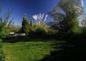 Vistas del jardín con césped cuidado