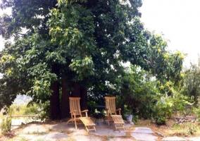 Banco de madera al aire libre