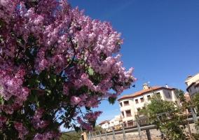 Encanto de Aragón
