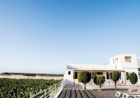 Casa Rural Finca Delicias- La Canaria - Alcala, Tenerife