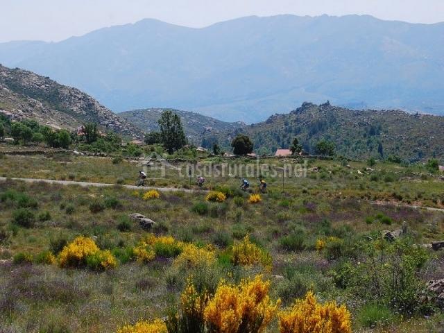 Casa inura casas rurales en el barraco vila for Jardines del alberche