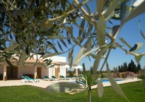 Finca Son Virgili - Campos, Mallorca