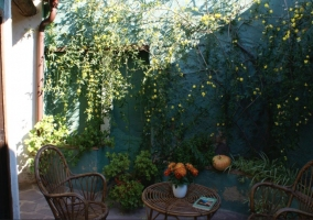 Outdoor patio with pumpkins