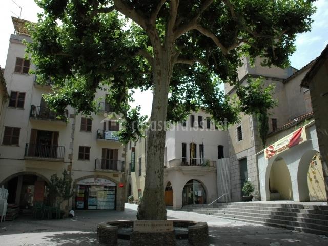Plaza de Arbúcies
