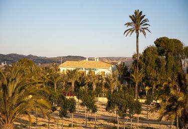 Finca Santa Barbara - Elche/elx, Alicante