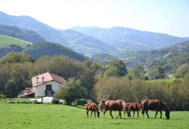 Casa Rural Arriaran - Pueblo Leiza/leitza, Navarra