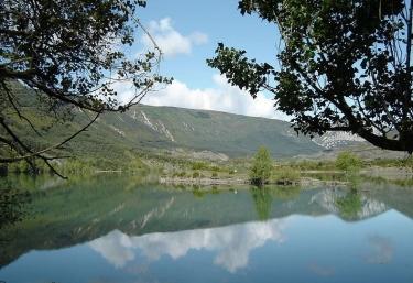 Zona natural con el pantano