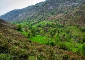 Valle de Viango