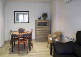 Cal Negri- Apartamento Manuel
