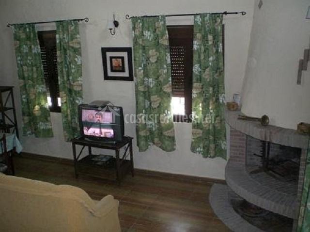 Salón con chimenea en la esquina y televisor encendido
