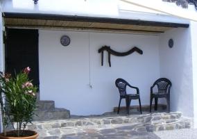 Casa de las Flores- Camelia