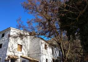 Casa Rural Cortijo Majuela