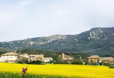 Basaula Berri - Muneta, Navarra