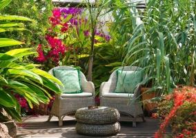 Finca Botánico- Apartamento Jardín Secreto