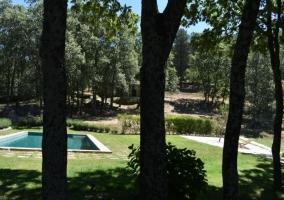 La Charca Verde