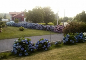 Cierre floral