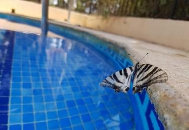 La Mariposa - Gebas, Murcia