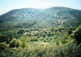 Montes de Toledo