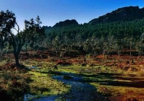 Zona natural de nuestro entorno