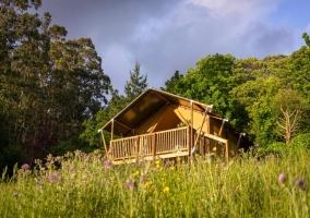 A Tenda de Naterra