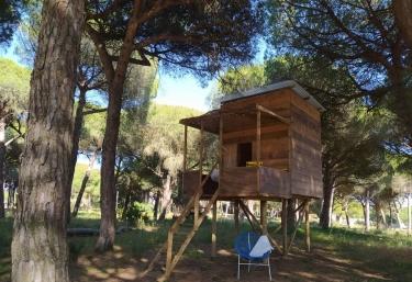 MiCielo- Casilla Salvia - Vejer De La Frontera, Cádiz