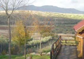 Las Cabañas del Pantano